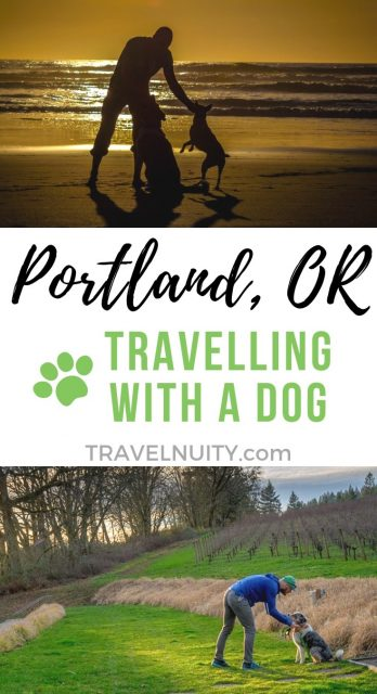 Visit Portland with a dog