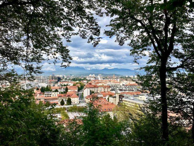 Dog-friendly Ljubljana