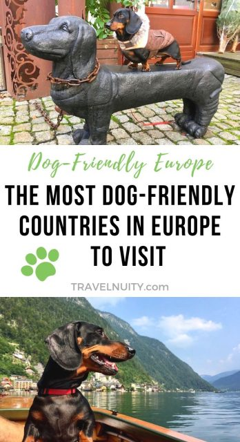 Most Dog-Friendly Countries in Europe