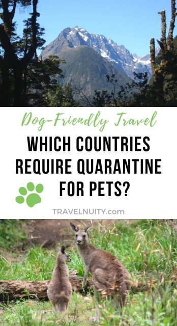 Which Countries Require Quarantine for Pets pin