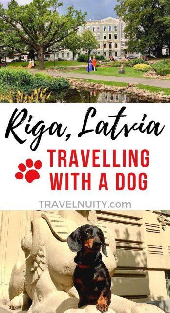 Riga Dog-Friendly Travel