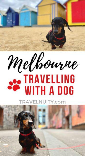Dog-friendly Melbourne