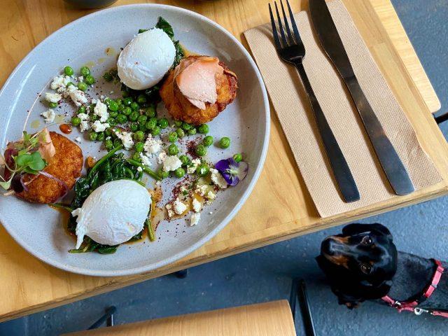 Dog-friendly cafe Yarra Valley
