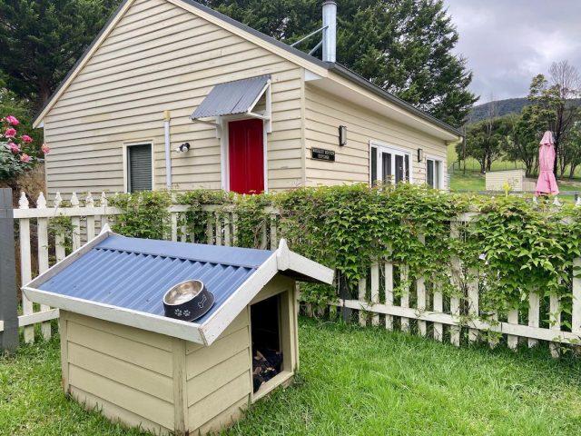 Dog-friendly accommodation Yarra Valley