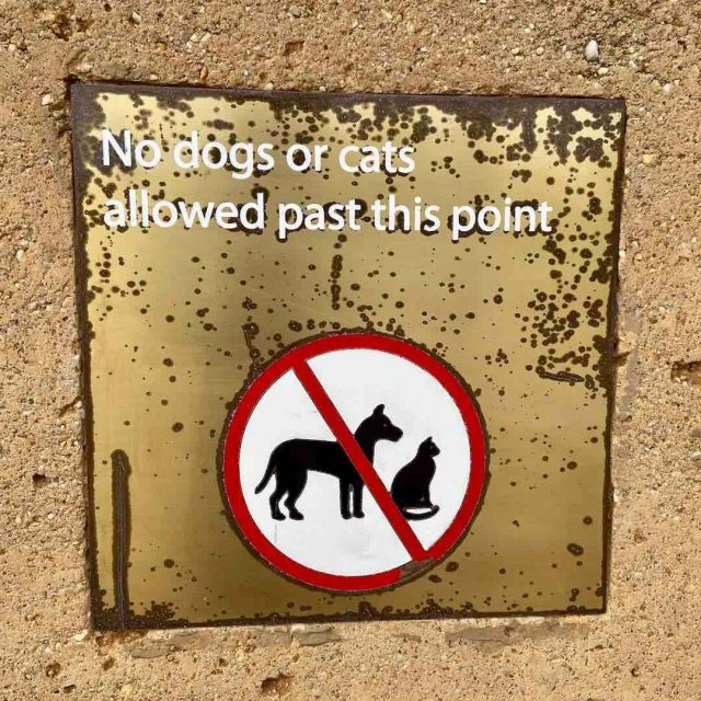 No dogs allowed at 12 Apostles