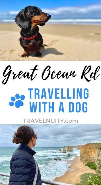 Dog-Friendly Great Ocean Road