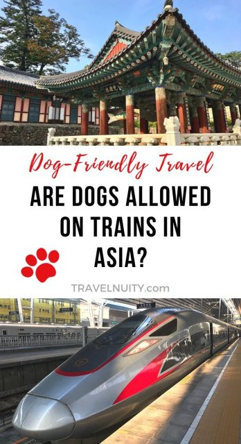Dogs on Trains in Asia