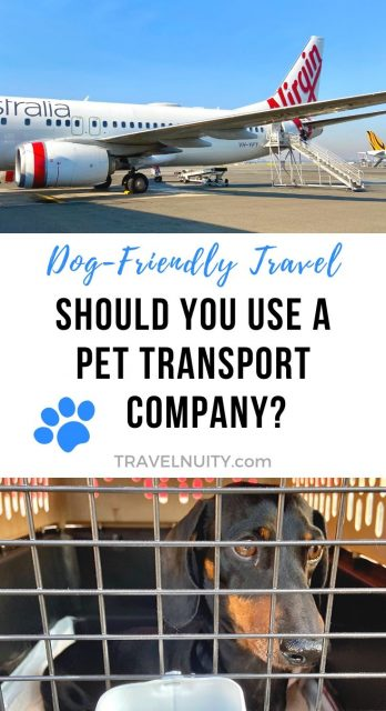 Pet transport company