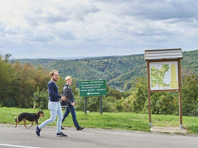 Dog-Friendly Ardennes