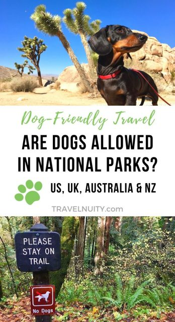 Dogs in National Parks