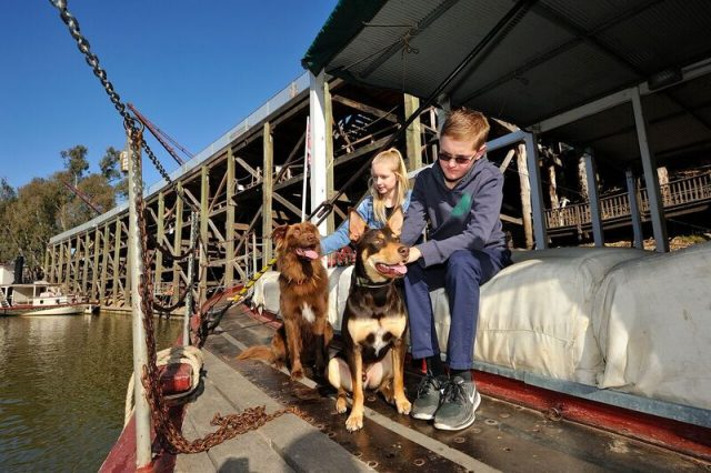 Dog-Friendly Echuca Paddlesteamers