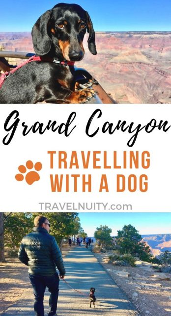 Grand Canyon Dog-Friendly Travel