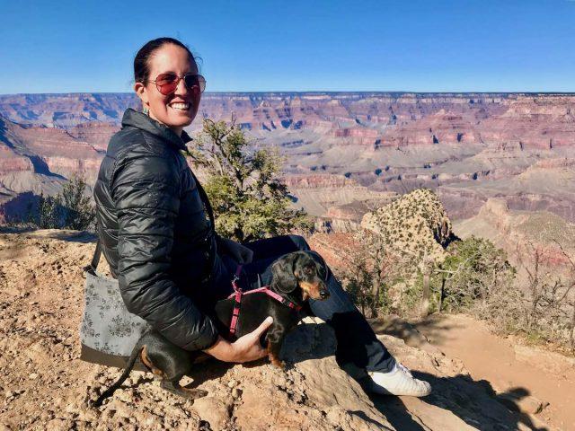 Taking dog overseas from Australia