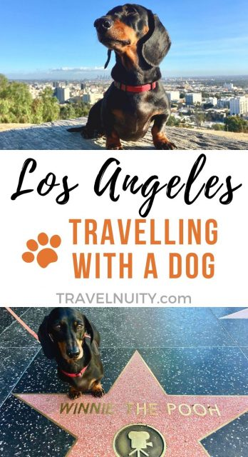 Dog-Friendly Los Angeles