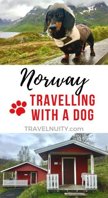 Norway Dog-Friendly Travel