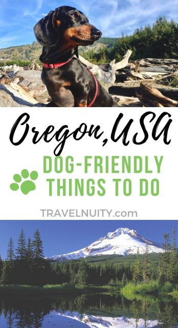 Oregon Dog-Friendly Things to Do