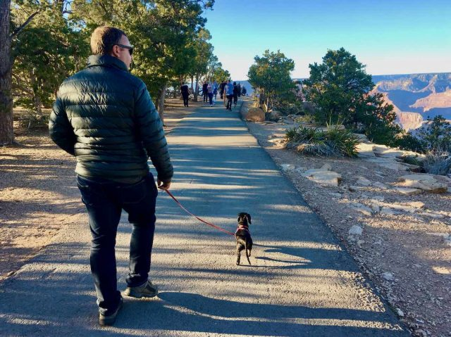 Dog-friendly Grand Canyon