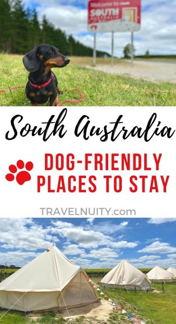 Pet-Friendly Accommodation South Australia