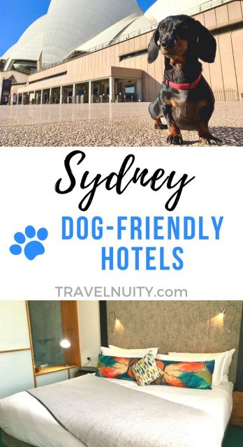 Sydney Dog-Friendly Hotels