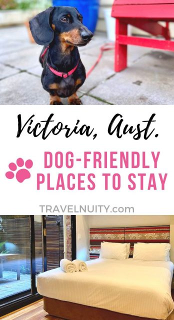 Victoria Dog-Friendly Places to Stay