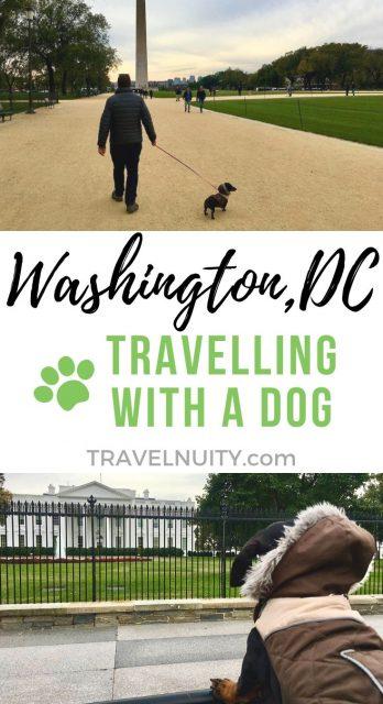 Washington DC Dog-Friendly Travel