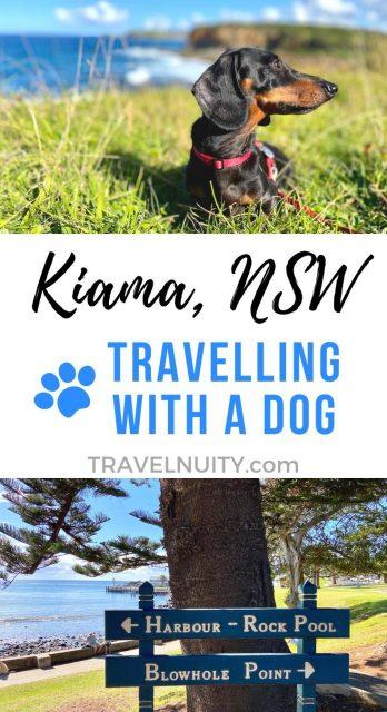 Kiama & Gerringong Dog-Friendly Travel