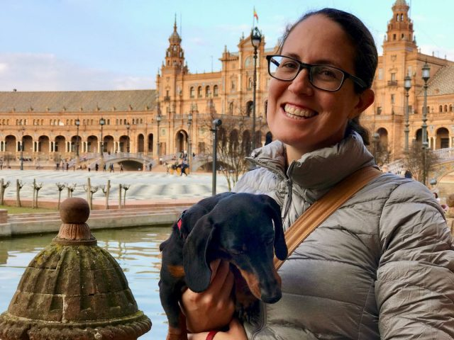 Dog-friendly things to do in Spain