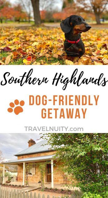 Southern Highlands Dog-Friendly Travel