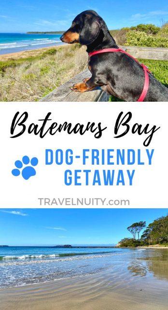 Batemans Bay Dog-Friendly Travel