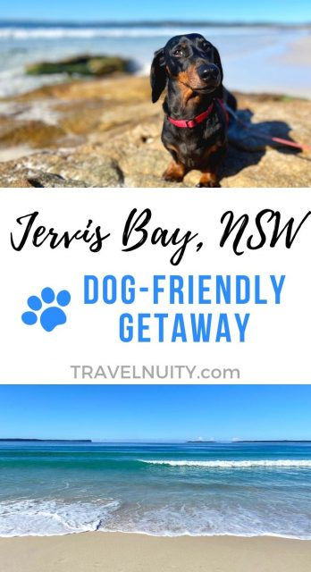 Jervis Bay Dog-Friendly Travel