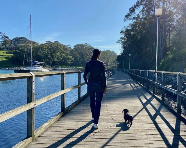 The Mill Bay Boardwalk, a dog-friendly walk in Narooma