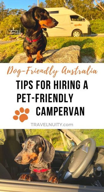Pet-Friendly Campervan in Australia
