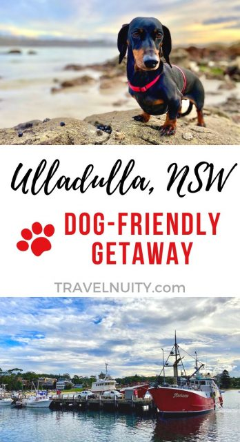 Ulladulla Dog-Friendly Travel