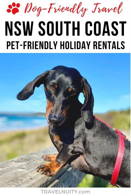 Pet-friendly holiday rentals on the NSW South Coast, Australia